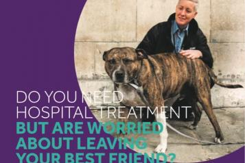 mayhew lambeth hospital pet support